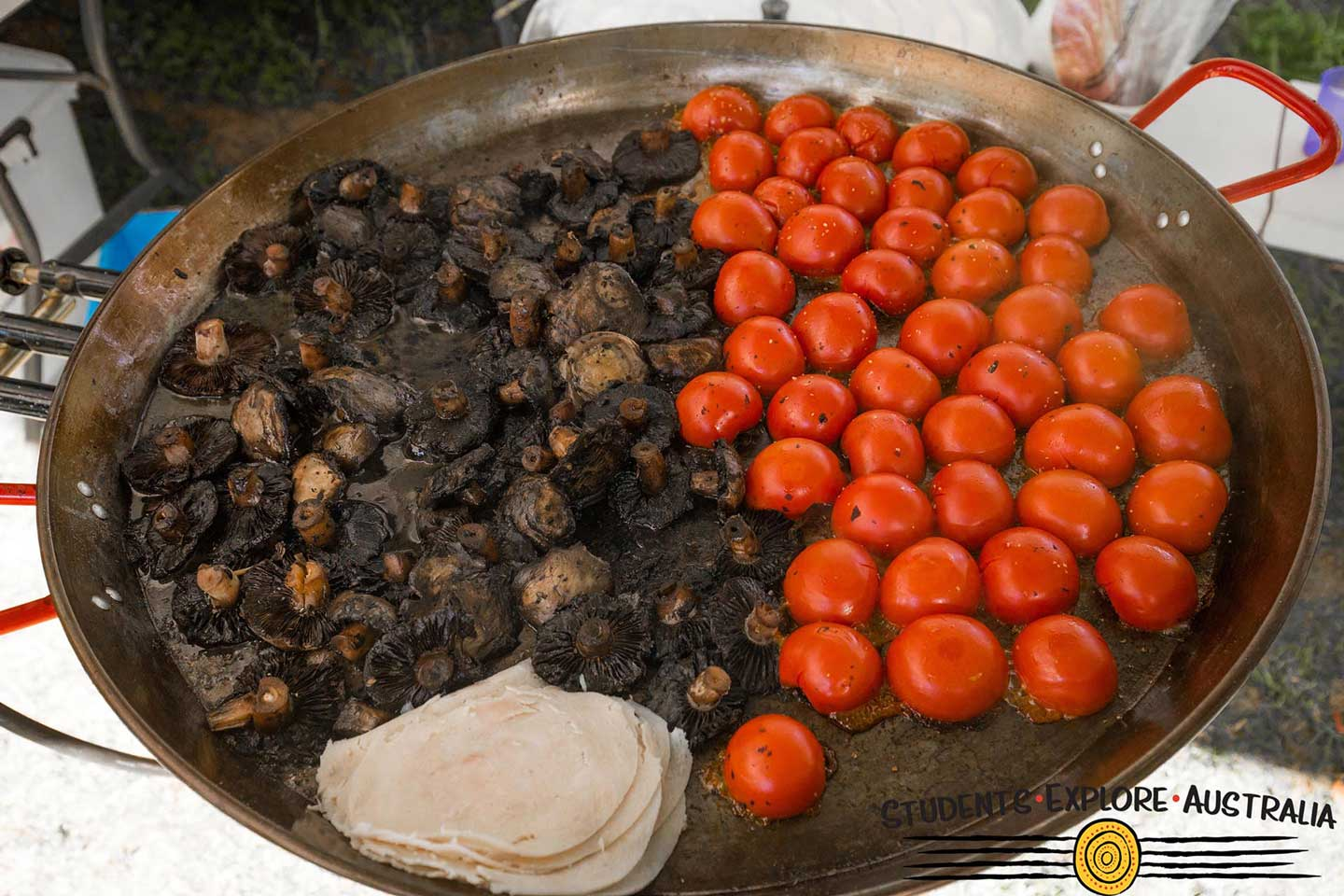 A plate of tomatoes, mushrooms, and dip